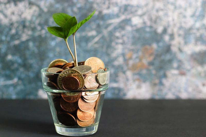 Neu: Nachhaltige Geldanlage bei Ginmon